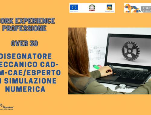 WORK EXPERIENCE | OVER 30 | DISEGNATORE MECCANICO CAD-CAM-CAE/ESPERTO DI SIMULAZIONE NUMERICA